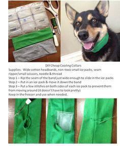 DIY Dog Cooling Collar #Dog #DIY #Summer
