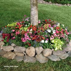 Shady Annual Tree Ring – Wildflower Turf – Garden Mat – Walter Drake - front yard landscaping ideas on a budget Landscaping With Rocks, Front Yard Landscaping, Backyard Landscaping, Landscaping Borders, Inexpensive Landscaping, Florida Landscaping, Landscaping Images, Backyard Patio, Decorative Rock Landscaping