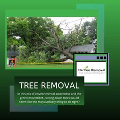 Well, truth be told, sometimes it is the only option. This is especially so if the tree poses a risk to your life, the lives of others and even your property. Call at now. The Lives Of Others, Gta, Things To Do, Environment, How To Remove, Wellness, Poses, Green, Life