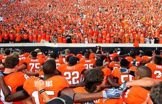 proud and immortal, bright shines your name. oklahoma state we herald your fame. ever you'll find us loyal and true, to our alma-mater: OSU Oklahoma State University, Oklahoma State Football, Football And Basketball, College Football, Orange Power, Go Pokes, Cowboy Love, Alma Mater, I School