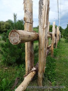 Split Rail Fence Design & Ideas - How to build Cheap Split-Rail Fence Log Fence, Driveway Fence, Rustic Fence, Front Yard Fence, Farm Fence, Cedar Split Rail Fence, Outdoor Fencing, Ranch Fencing, Fence Construction