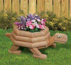 Wood turtle flower pot