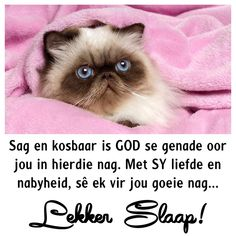 Good Night Blessings, Good Night Wishes, Day Wishes, Goeie Nag, Afrikaans Quotes, Christian Messages, Good Night Image, Gallery, Good Evening Wishes