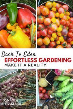 Effortless gardening with Back to Eden Gardening method