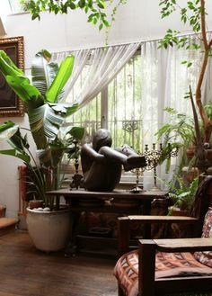 plants and statue.