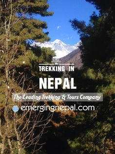 Nepal is a beautiful country. It is encompassed by the biggest mountain hills, stunning nature and the best travel things. Nepal is situated between two gigantic countries India and China. Mt. Everest, birth place of Lord Buddha and exciting natural resources are the best ways to familiar with Nepal Travel.  Talking about those of things, Trekking in Nepal is a major activity can be done all parts of Nepal with help of a professional company which is Emerging Nepal Trek & Tours.  Emerging…