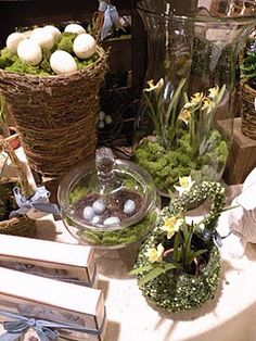 Container ideas for spring