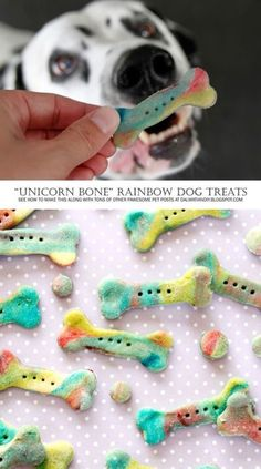 """DIY Dog Treat Recipes Instructions: Homemade """"Unicorn Bone"""" Rainbow Marbled Dog Treats - Tap the pin for the most adorable pawtastic fur baby apparel! You'll love the dog clothes and cat clothes! Puppy Treats, Diy Dog Treats, Homemade Dog Treats, Healthy Dog Treats, Healthy Pets, Dog Biscuit Recipes, Dog Food Recipes, Easy Dog Treat Recipes, Food Dog"""