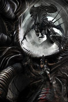 The Alien Queen - Art by Benjamin Carré I know they're supposed to be gross and… Alien Vs Predator, Predator Art, Predator Movie, Les Aliens, Aliens Movie, Aliens 1986, Xenomorph, Alien Creatures, Fantasy Creatures
