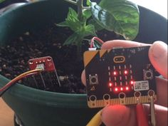 Micro:bit Moisture sensor