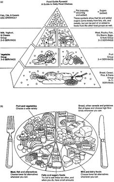 The Food Pyramid With A Drink And Other Coloring Pages Litabkur