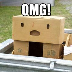 Boxface is surprised.
