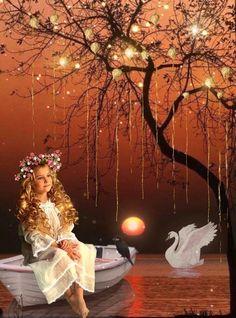Romantic Good Night Image, Cute Good Night, Good Night Sweet Dreams, Good Night Moon, Good Morning Good Night, Good Morning Beautiful Flowers, Beautiful Good Night Images, Beautiful Scenery Pictures, Beautiful Gif