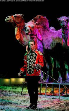 Circus Renz Berlin, Heiloo, Holland