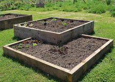 Simple Raised Garden Bed Ideas for Backyard Landscaping - Page 4 of 63 Container Herb Garden, Square Foot Gardening, Raised Garden Beds, Raised Beds, Kraut, Garden Planning, Backyard Landscaping, Vegetable Garden, Gardening Tips