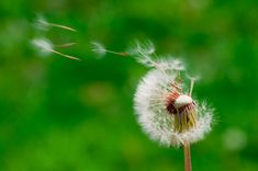 5 Hazardous Habits That Kill Your Life's Dream