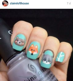 Animals, bear, Fox, racoon, nails