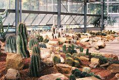 botanic glass house.pentax asahi
