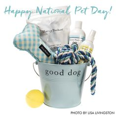 Happy National Pet Day!  Visit the Harry Barker Instagram page to win!
