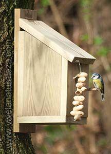 Pajaritos Caja nido
