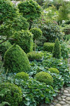 HAVETID - Garden ideas low maintenance