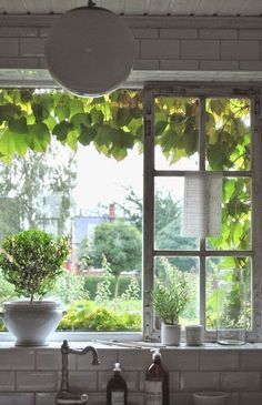 Fenster Deko | Windows Decor