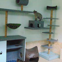 Belanja online aman dan nyaman dari cakaran kucing - mainan,garukan/cakaran kucing Cat Scratcher, Cat Condo, Cat Tree, Coffee Shop, Cape, Kitten, Studio, Home Decor, Coffee Shops