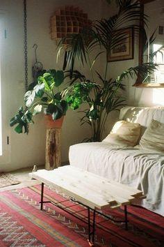 I love plants in the bedroom.