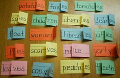 Teacher in the Making :  Plurals from Pinterest The students did so extre...
