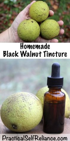 Use these simple herbal home remedies for cold and flu that really work from a professional herbalist. I can not wait to test these homemade herbal out this year! Best thing, they are all whipped up with common kitchen herbs and ingredients. Cold Home Remedies, Natural Home Remedies, Natural Healing, Herbal Remedies, Health Remedies, Natural Oil, Natural Herbs, Natural Beauty, Holistic Healing