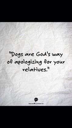 Dogs #truth #lovedogs