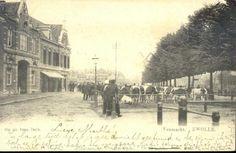 Gezicht op de vee- of beestenmarkt in noordelijke richting, 1900-1902. De opname is gemaakt ter hoogte van de Overijsselsche Veestalling Maatschappij (Harm Smeengekade 16). Daarnaast bevindt zich Hotel Derboven (Harm Smeengekade 15). Het is marktdag. Grootvee wordt verhandeld. In de verte is de molen van Kok (Jufferenwalmolen) op het Maagjesbolwerk te zien.