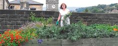"The Incredible Edible Town    Herb gardens in strips of earth bordering sidewalks. Apples, pears, cherries, raspberries and strawberries growing all around the town's health center. Corn growing tall in front of the police station, and fruit trees surrounding the fire station. Vegetables (with invitations to ""help yourself"") next to the railway station and bordering parking lots."