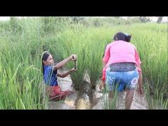 Amazing Girls Catching Fish Underwater by Hands, Catch Net Fishing Traditional, Finds Hard Fish # 82