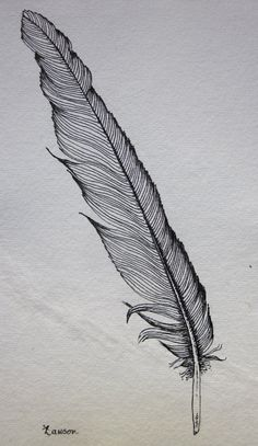 Black Feather 2  original ink drawing by anne4bags on Etsy, $15.00