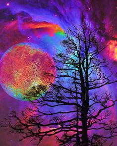 Some nights, looking up at the moon through the trees, we remember that we are all the universe, expressing itself as human but for a brief while.