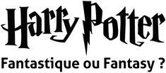 Quel est le genre de la série Harry Potter ? | Monde Fantasy