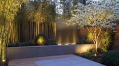 Jardins Moderno por Paul Marie Creation