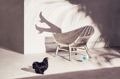 Ibride Design - Photo Cyrille Robin - AD Paris Telex - Set Design Solène Ortoli