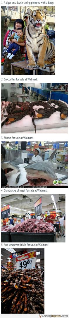 Funny+Chinese+products.+Tiger+on+a+leash,+crocodiles+and+sharks+for+sale+at+Walmart.