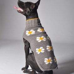 Let your furry fashionista show off her sense of style in this adorably cheerful Daisy Dog Sweater by Chilly Dogs. All tails will be waggin' when your pooch arrives! Chilly Dog Sweaters are made follo