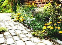 Lovely cobble and gravel path