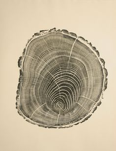 Bryan Nash Gill wood print - Gill used recycled lumber, covered it with ink and paper and pressed and scratched the wood pattern on the paper with his fingers  http://www.bryannashgill.com/
