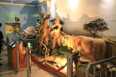 Museum Gilimanuk - Tempat Wisata di Bali Selain Pantai