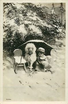 Vintage Photo Postcard Child Poodle Posing in Snow | eBay