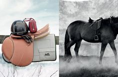 www.horsealot.com, the equestrian social network for riders & horse lovers | Equestrian Lifestyle : Ditte Isager for The Horse Rider's Journal.