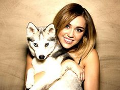 Two things that I adore: Alaskan klee kais and Miley Cyrus :) Miley Cyrus, Bob Dylan Covers, Alaskan Klee Kai, A Husky, Star Track, Dog Id, Cute Celebrities, Celebs, Cute Dogs