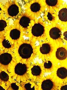 (Sun)Flower Power! #CountryChic