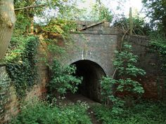 Google Image Result for http://upload.wikimedia.org/wikipedia/commons/3/3f/Footpath_passes_under_the_disused_railway_line_-_geograph.org.uk_-_436427.jpg