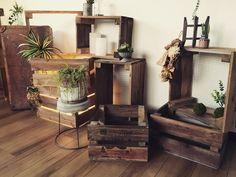 木材と組み合わせてキャベツボックスに。インテリアにもガーデン用としても使えそう。